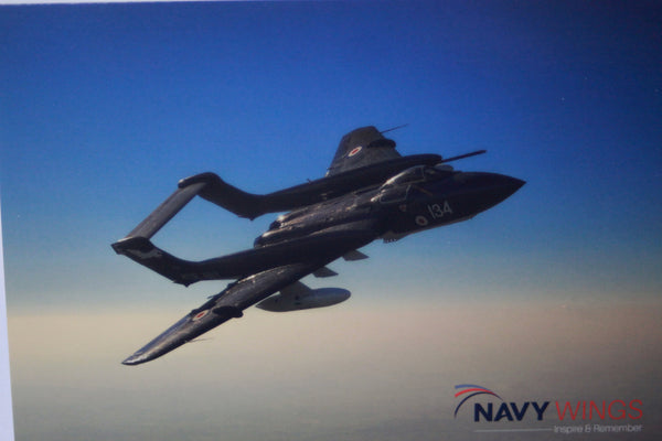 Postcard/Notecard Sea Vixen