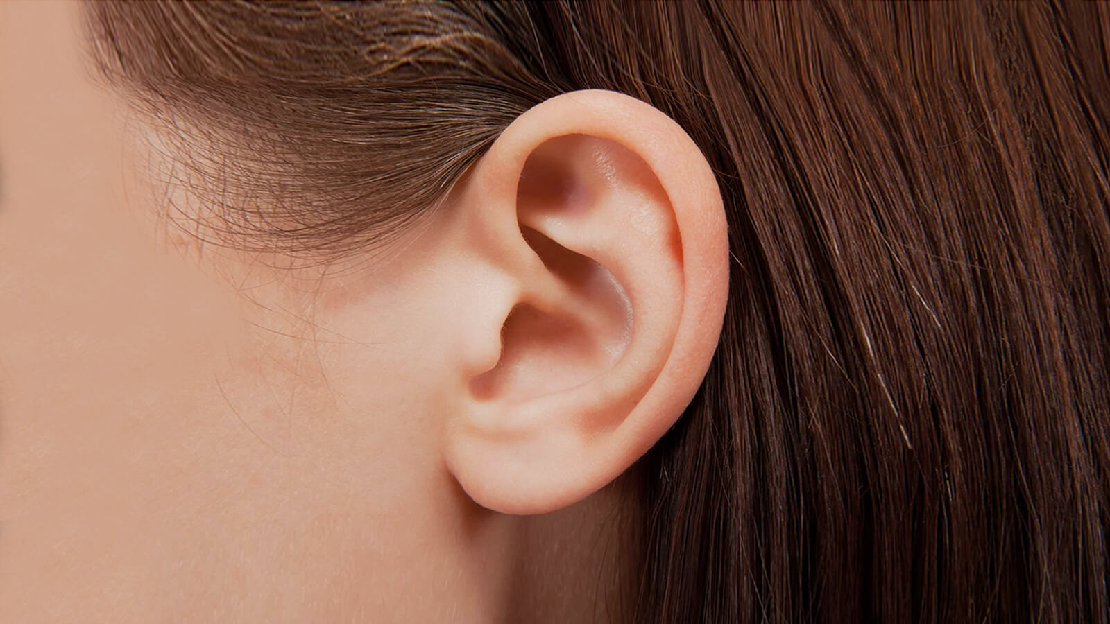 Auriculotherapy 101: Basics of Ear Acupressure Therapy