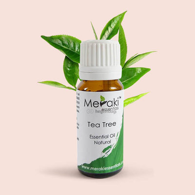 Tea tree essential oil by Meraki Essentials | order online at heyzindagi.com