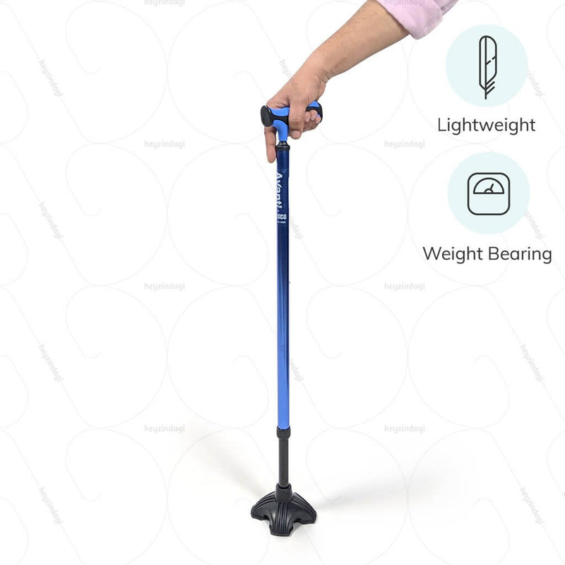 Avanti Plus T-Shape Stick with Big Shoe (Aluminium)