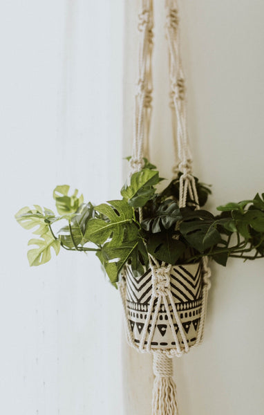 Macrame Plant Hanger Workshop with Michigan Barn Wood & Salvage