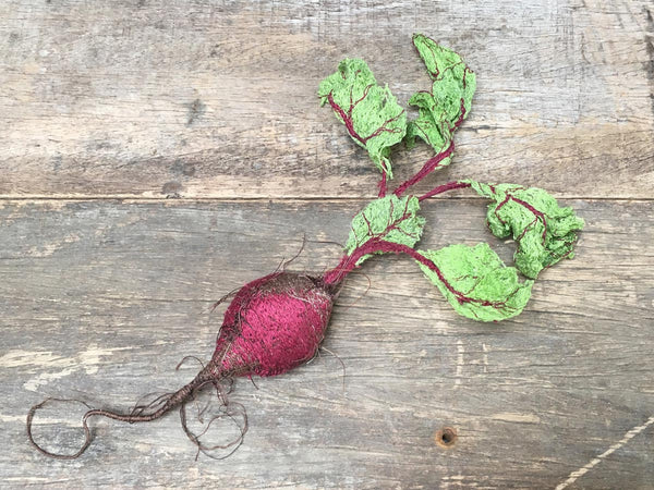 Textile Baby Beetroot