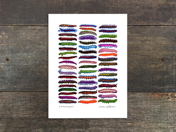 Caterpillars Mini Prints
