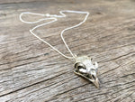 Load image into Gallery viewer, Hawk Skull Pendant