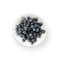 SUSTAIN FREEZE DRIED BLUEBERRIES