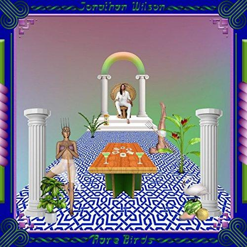 Jonathan Wilson - Rare Birds - Records - Record Culture