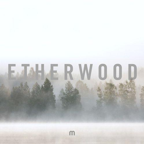 Etherwood - In Stillness - Records - Record Culture