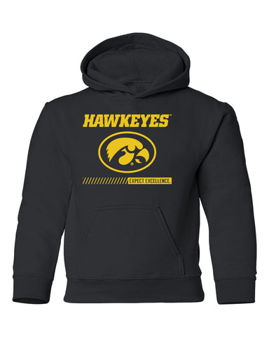 Iowa Hawkeyes Youth Hooded Sweatshirt - Hawkeyes with Oval Tigerhawk - Expect Excellence