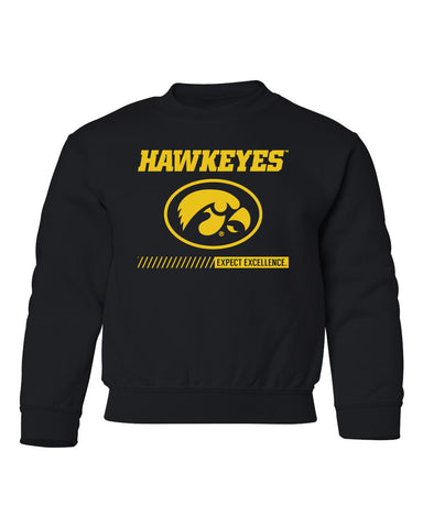 Iowa Hawkeyes Youth Crewneck Sweatshirt - Hawkeyes with Oval Tigerhawk - Expect Excellence