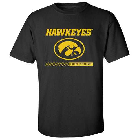 Iowa Hawkeyes Tee Shirt - Hawkeyes with Oval Tigerhawk - Expect Excellence