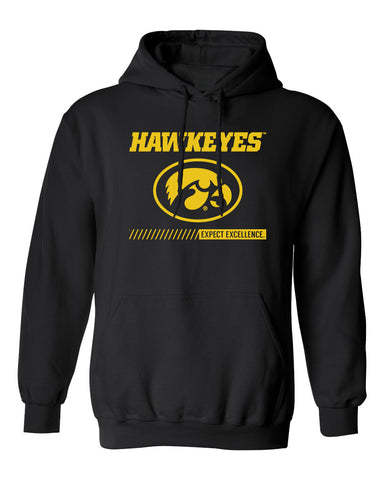Iowa Hawkeyes Hooded Sweatshirt - Hawkeyes with Oval Tigerhawk - Expect Excellence