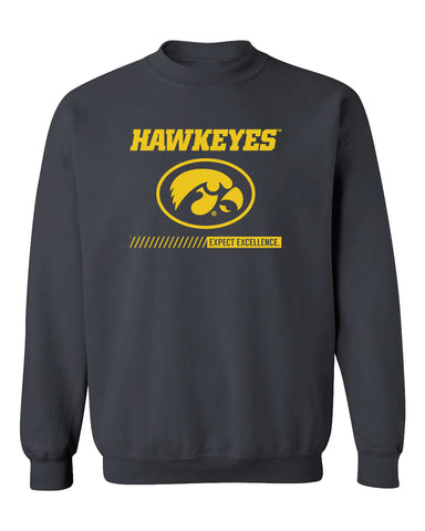 Iowa Hawkeyes Crewneck Sweatshirt - Hawkeyes with Oval Tigerhawk - Expect Excellence