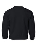 Iowa Hawkeyes Youth Crewneck Sweatshirt - Hawkeyes Horizontal Stripe