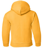 Iowa Hawkeyes Youth Hooded Sweatshirt - IOWA Hawkeyes Vertical Stripe with Tigerhawk