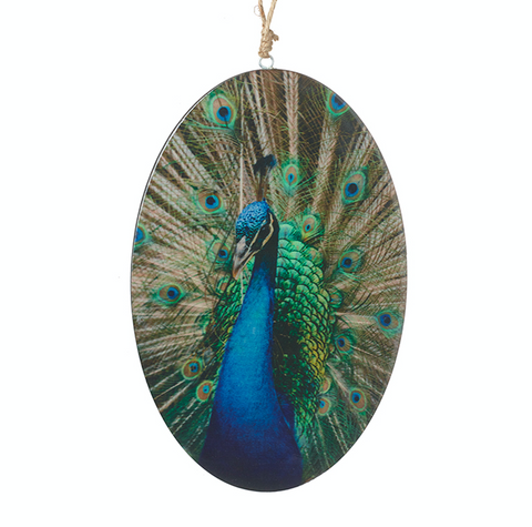 Heaven Sends HOW064A Large Oval Peacock Hanging Decoration