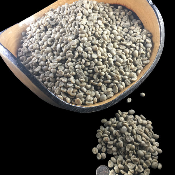 Nicaragua 100% Pure Arabica Specialty High Grown (SHG) EP Green Coffee Beans
