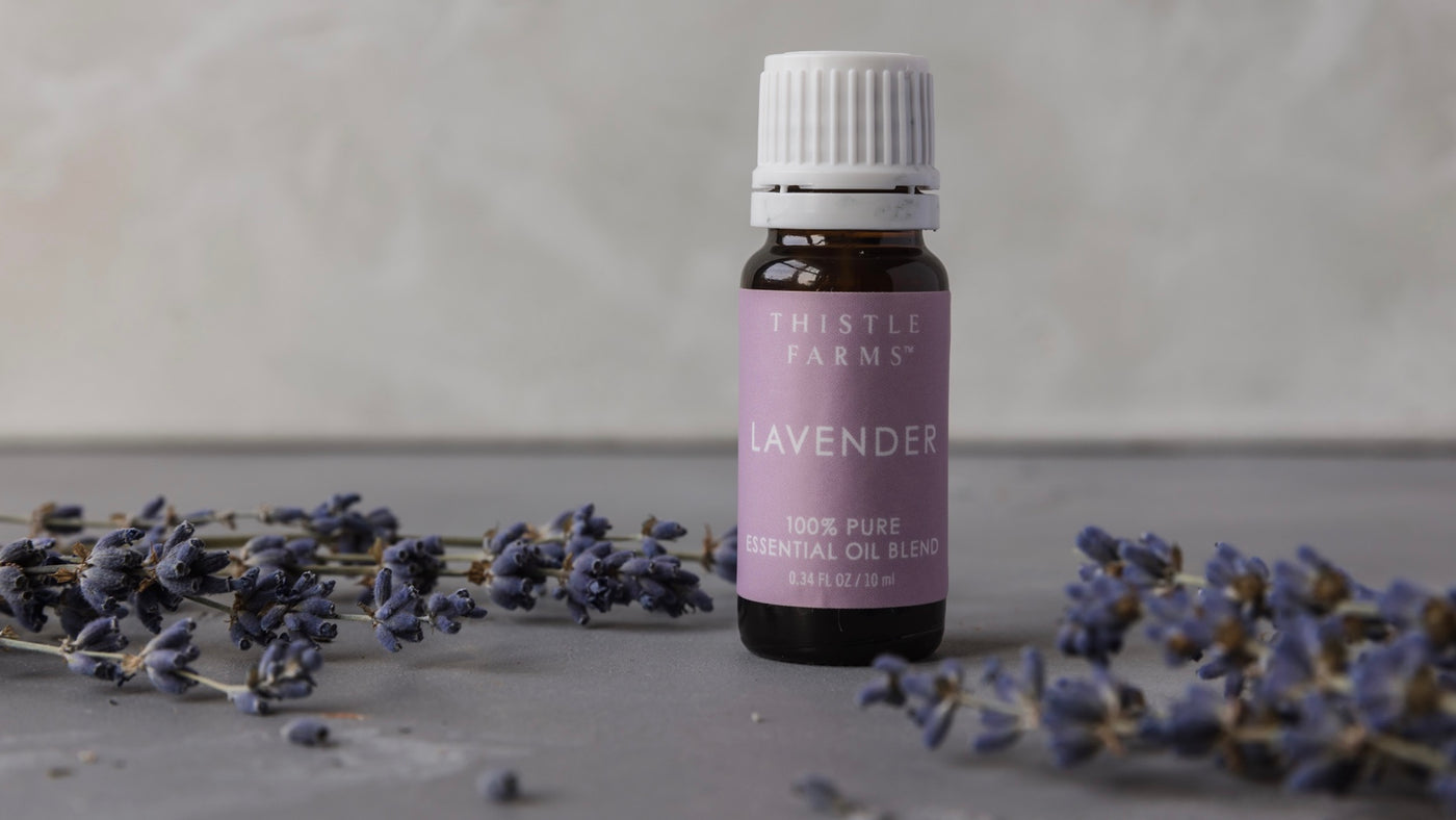 Lavender, the Queen of Essential Oils