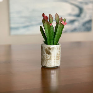 Small Ceramic Cylinder Vase with Faux Cacti