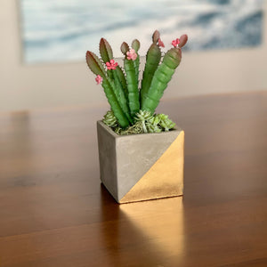 Small Modern Vase with Faux Cactus