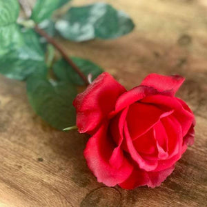 Red Rose Stem - Faux Floral - Real Touch