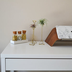 Iris + Poppy_Home Decor