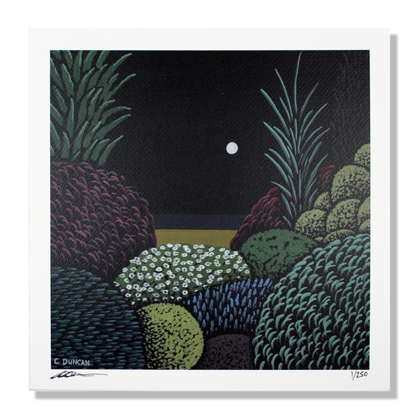 HEALTH NIGHT GARDEN PRINT #3