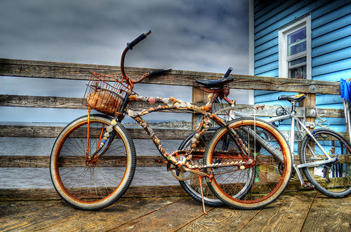 Shell Beach Cruiser