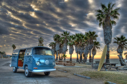 VW Bus and Palm Trees