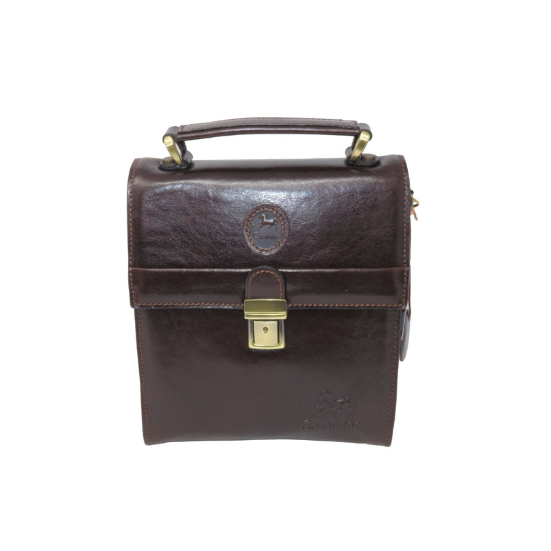 Small Brown Vintage Messenger Bag