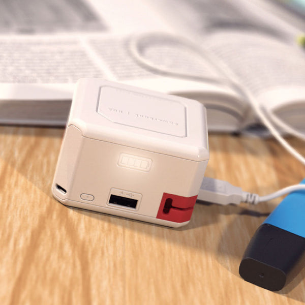 Allocacoc® PowerUSB |Portable|