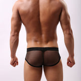 Mesh Transparent Briefs
