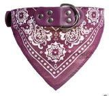 Leather Pet Collar With Bandanna