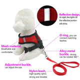 Breathable Mesh Pet Harness & Leash For Small Dogs & Cats
