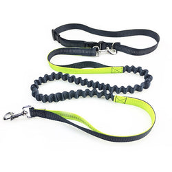 Hands-Free Running Dog Leash