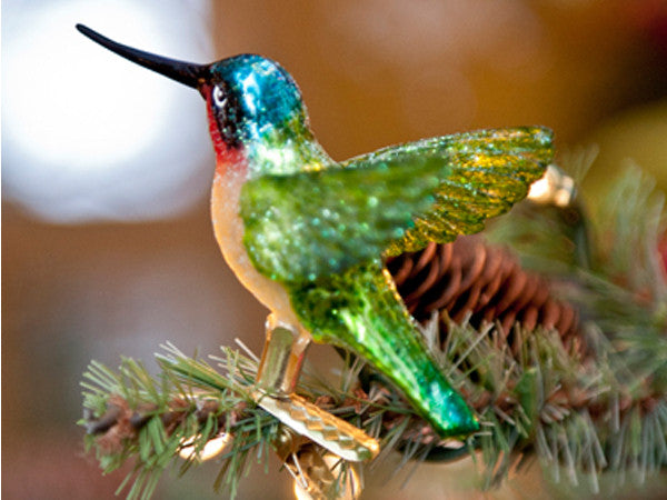 The Hummingbird Clip