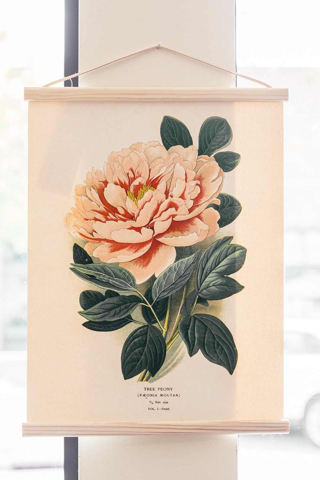 Vintage Botanical Peony Flower Canvas Wall Hanging