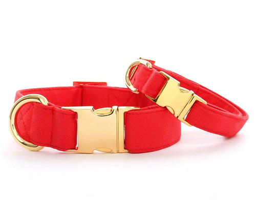 Ruby Dog Collar - M/Gold