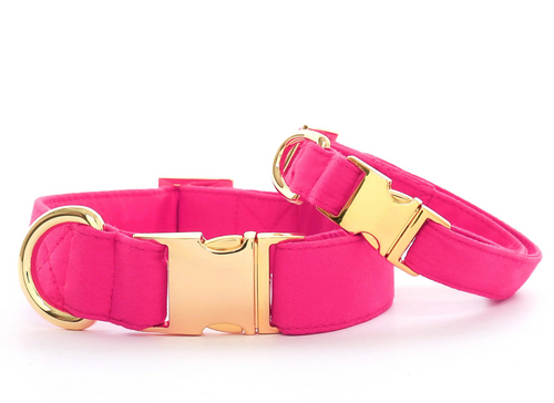 Hot Pink Dog Collar - M/Gold