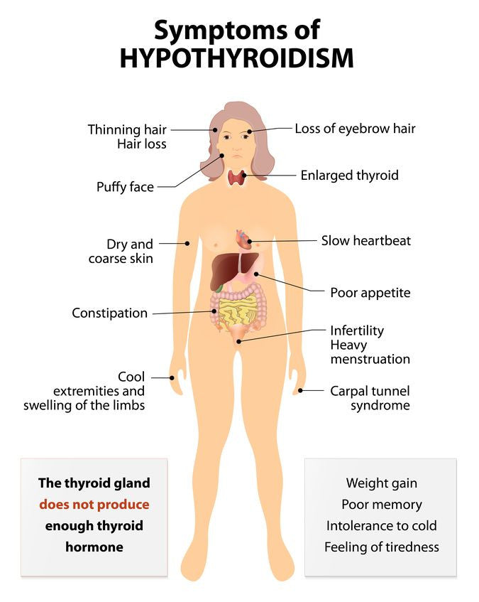 The Secrets Of Hypothyroidism