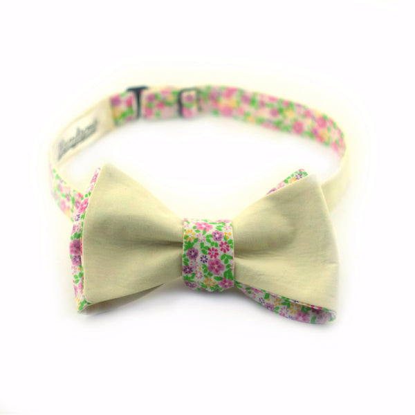 """Banana Splash"" Bow Tie - Unique."