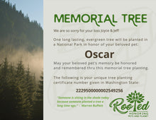 Rooted Pet Memorial | Tree Planting Packages