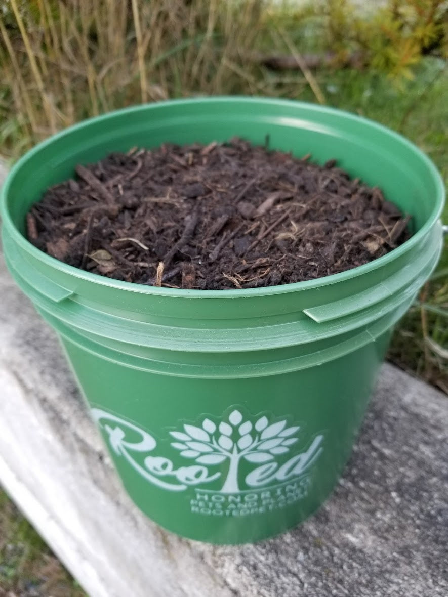 Rooted Rescue Blend | Nutrient Rich Planting Soil