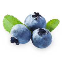 Blueberry E-Liquid - Bang Bang Vapors