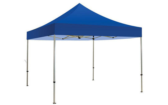 Blue Blank 10 x 10 Foot Canopy Tent and Frame Combo - Lets Go Banners