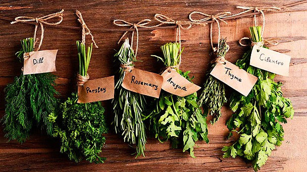 Herbs & Spices - Your Beeline to Better Health