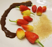 """Sweet & Hot"" Chocolate Dessert Sauce"