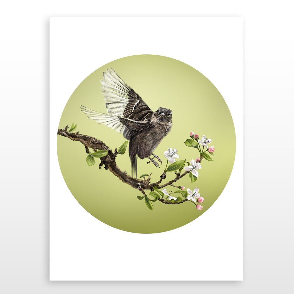 Sparrow and Blossom