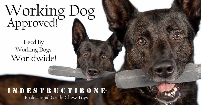 Indestructibone Dog Toy