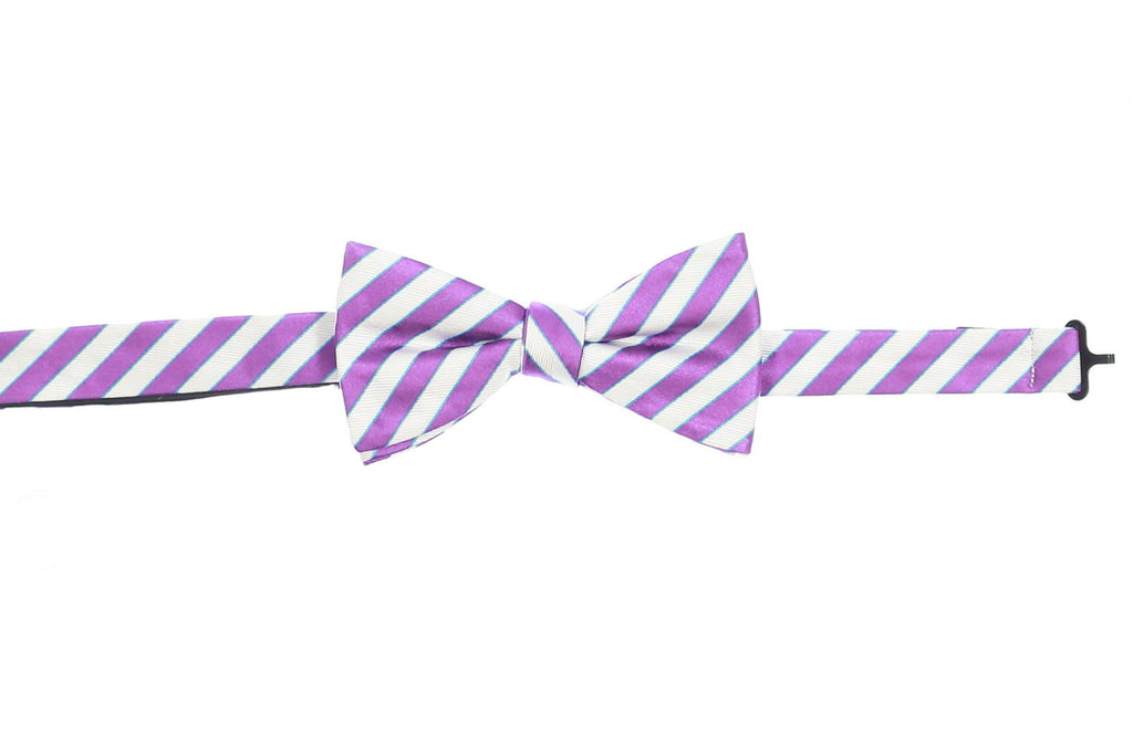 Countess Mara Mens Purple Plaid Pre-Tied Bow Tie