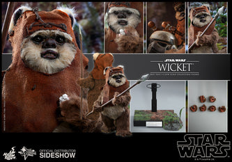 Hot Toys Star Wars Wicket Sixth Scale Figure